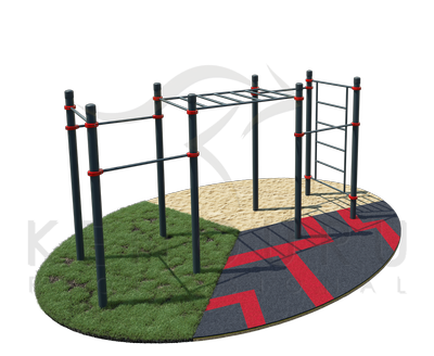 Classic monkey bar, five pull-up bars and a Swedish wall